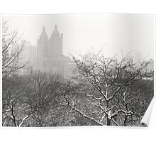 Snow Globe - Winter - Central Park - New York City Poster