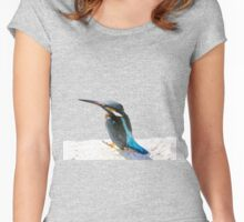 A Beautiful Kingfisher Bird Vector Women's Fitted Scoop T-Shirt