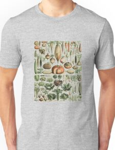 Autumn Fall Vegetables Vegetarian Vegan Thanksgiving Dictionary Organic Art Vintage Cottage Chic Unisex T-Shirt