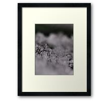 Crystal Flake Framed Print