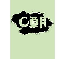 Sogetsu Ikebana (unofficial) Photographic Print
