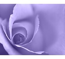 Pale Purple Floral Wall Art Photographic Print