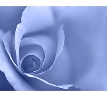 Pale Blue Floral Wall Art Photographic Print