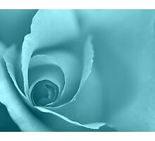 Pale Turquoise Floral Wall Art Photographic Print
