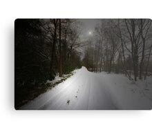 JUST A BEAUTIFUL SNOW SCENE Metal Print