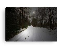 JUST A BEAUTIFUL SNOW SCENE Canvas Print