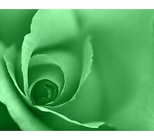 Lime Green Coloured Floral Wall Art Photographic Print