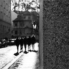 """""""Gangs of Prague"""" by Alexander Isaias"""