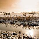 Chesterfield Canal - Middlecroft by Jon Bradbury