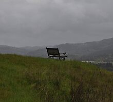 Bench With A View by Jos-Vignettes