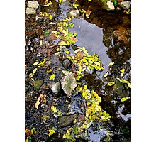 Water Lace Photographic Print