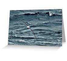 Wandering Albatross at sea in Southern Ocean Greeting Card