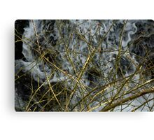 Water and Bramble Canvas Print