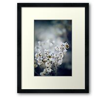 Frozen Flowers Framed Print