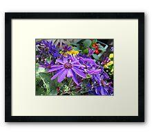Echo of Spring - Glorious Senettti Planter Framed Print