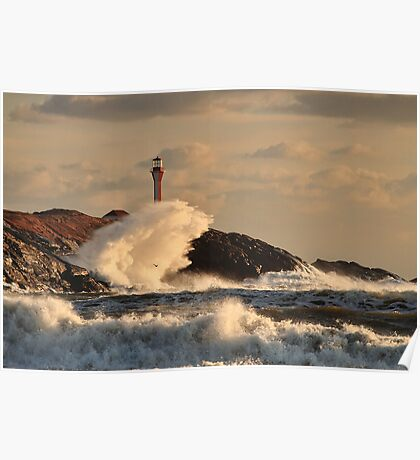 Wave Crashing at Cape Forchu Poster
