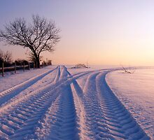 Tracks in the Snow by mikebov