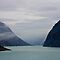 Tracy Arm Fjord by John Butler