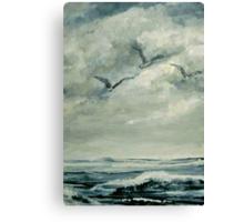 CC4 Canvas Print