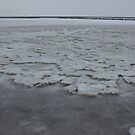 Icy Wadden Sea by Lindie Allen