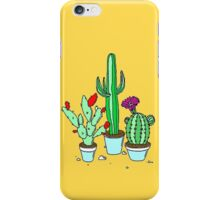 cactus trio iPhone Case/Skin