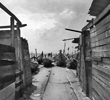Harbor - B & W by Shamila Chady