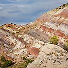 Rainbow Hills Color by Kim Barton