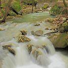 Sweet Indian Creeks Flowing Waters by David  Hughes