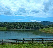 Cherokee Lake  by Sue Justice