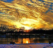 A Winter Portrait Along The Arkansas River by Vince Scaglione