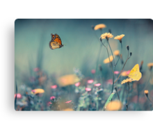 Dreamin Summer  Canvas Print