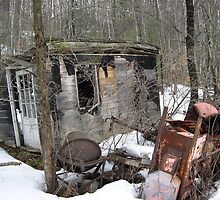 Abandoned by Carolyn Clark