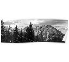 Tatoosh Mountains at Mount Rainier  Poster