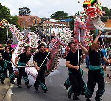 Ficifolia Parade, Drouin, Gippsland by Bev Pascoe