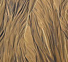 Channels in the Sand, Taroona Beach, Tasmania by Chris Cobern
