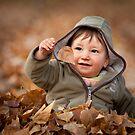 Autumn Wonder by Paul Grinzi