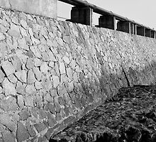 The wall... by Rene Fuller