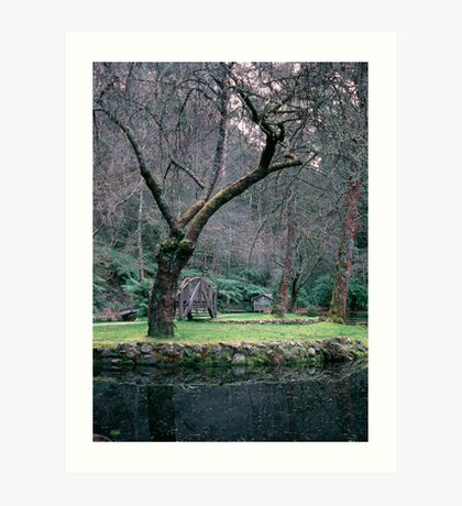 Little house on the lake, Burnham Beeches. Art Print