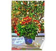 Blooms at the Window Poster