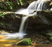 Leura Cascades by Fran53
