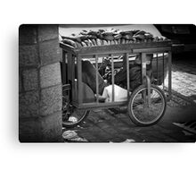 The bread seller of Jerusalem Canvas Print