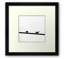 Doves on Streetlight Framed Print