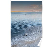 Dead Sea salt crystals and lone swimmer Poster