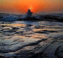Splash at Sunrise by Robyn Forbes
