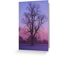 Purple Skies Greeting Card