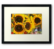 The sunflowers Framed Print