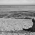 Lone Man Sitting on Pebble Beach by Natalie Kinnear