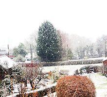 Winter Begins by missmoneypenny