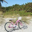 Beach Bike by Rosie Brown