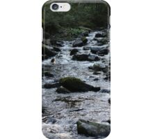 Where peaceful waters flow - iPhone case iPhone Case/Skin